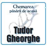 Tudor Gheorghe - Chemarea pasarii de acasa