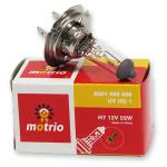 Bec far MOTRIO H7 6001998888, 55W, 12V