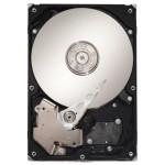 Hard Disk Drive SEAGATE ST3000DM001, 3TB, 7200RPM, 64MB, SATA 3