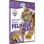 Afla totul despre - Felinele mari DVD