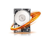 Hard Disk server SEAGATE Performance 15K 300GB, 15000rpm, SAS, 64MB, ST9300653SS